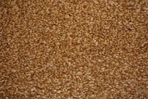 jackson carpet cheap and quality